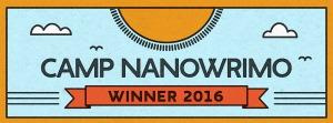 Camp nano winner 2016